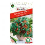 Pomidor balkonowy koktajlowy VILMA nasiona 0,2g