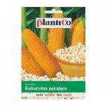 Kukurydza pękająca JANTAR na pop-corn nasiona 10 g