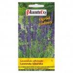 LAWENDA LEKARSKA nasiona lawendy 0,2 g PLANTICO