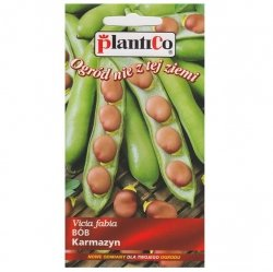 BÓB czerwony KARMAZYN nasiona warzyw 30g