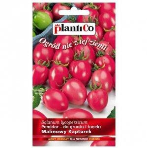Pomidor koktajlowy MALINOWY KAPTUREK nasiona 0,2g