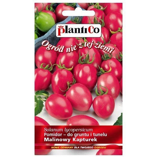 Pomidor Malinowy Kapturek nasiona