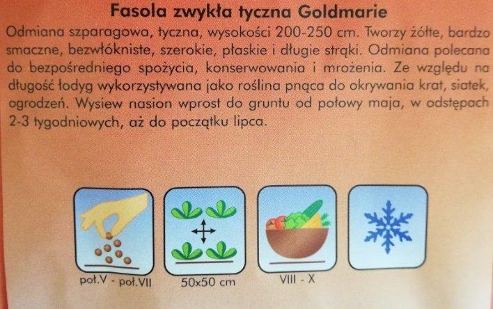 Fasola szparagowa tyczna GOLDMARIE Plantico