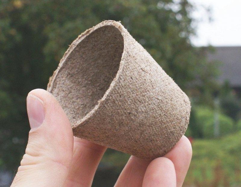 Doniczki torfowe JIFFY okrągłe 6cm - 100szt.  PROMOCJA