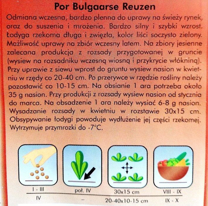 Por wczesny BULGAARSE REUZEN opakowanie nasion