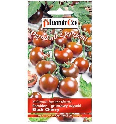 Pomidor black Cherry nasiona