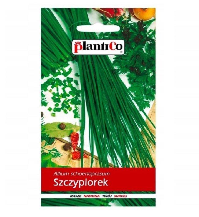 Szczypiorek Plantico