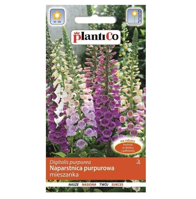 Naparstnica purpurowa nasiona Plantico