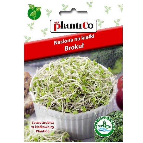 Brokuł nasiona na kiełki