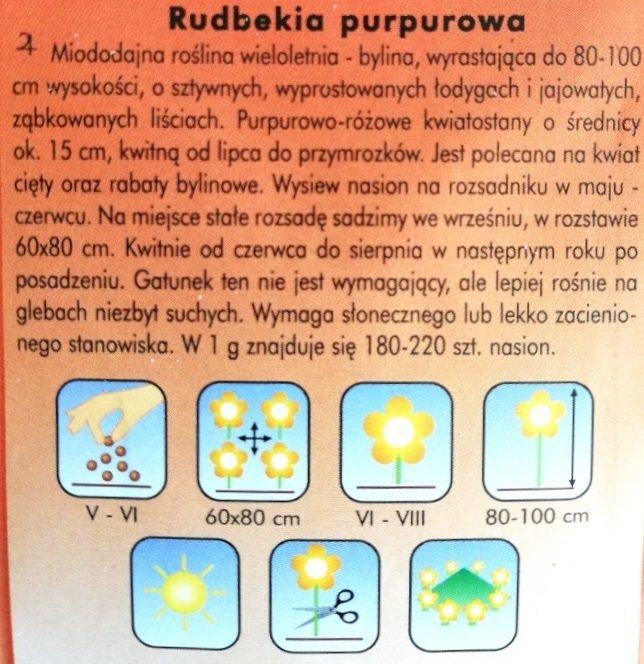 Rudbekia purpurowa nasiona Plantico