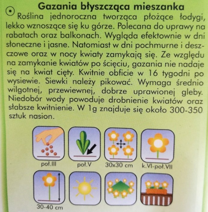 Gazania błyszcząca nasiona Plantico