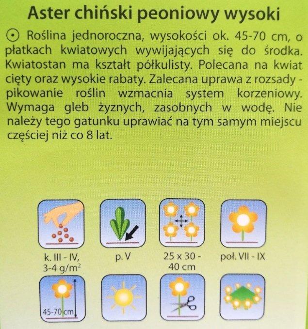 Aster peoniowy fioletowy nasiona Plantico