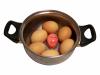 Kukułcze jajko - timer do gotowania