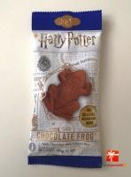 Harry Potter - Czekoladowa żaba z kartą czarodzieja