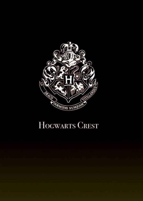 Harry Potter - Projektor Lumos Maxima