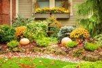 Kolorowa rabata jesienią - jakie rośliny wybrać.