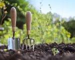 Jak przygotować glebę na nowy sezon uprawowy?