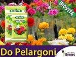 Ziemia do Pelargoni i roślin balkonowych 20L