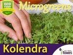 Microgreens - Kolendra siewna 4g