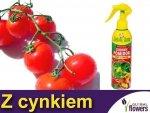 Spray z cynkiem zdrowy pomidor, fasola, truskawka, papryka
