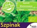 BIO Szpinak Winterreuzeng 10g