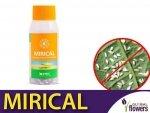 MIRICAL dziubałeczek mączlikowy (zwalcza mączlika) 100ml