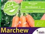 BIO Marchew Berllikumer 2 5g