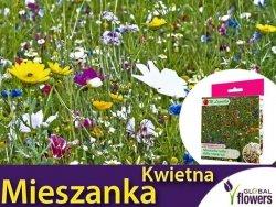Mieszanka Kwietna roślin dziko rosnących (jedno- i wieloletnie) nasiona 125g