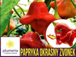 Papryka ostra OKRASNY ZVONEK (Capsicum baccatum) nasiona 0,15g