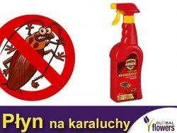 AROX KARATOX na karaluchy i inne owady biegające 500ml