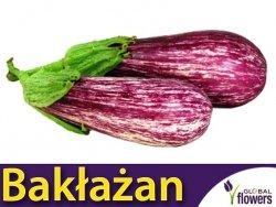 Oberżyna Bakłażan Tsakoniki (Solanum melongena) 0,5g