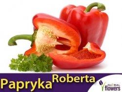 Papryka ROBERTA Czerwona Słodka (Capsicum annuum) nasiona 0,2g