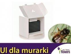 Ul pszczelinka wersja MINI