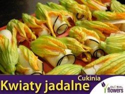 Kwiaty jadalne - Dynia zwyczajna cukinia Astra Polka nasiona 2g