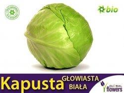 Kapusta głowiasta Roem van Enkhuizen 2 śr. wczesna (Brassica pleracea) 2g