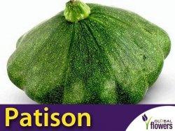 Dynia Patison zielona 'Gagat' XXL 500g (Cucurbita pepo)