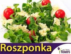 Roszponka (Valerianella locusta) XXL 100 g