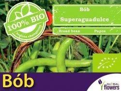 BIO Bób ogrodowy Superaguadulce 40g