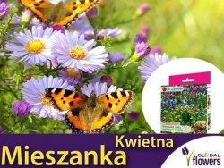 Mieszanka Kwietna roślin wabiących Motyle nasiona 125g