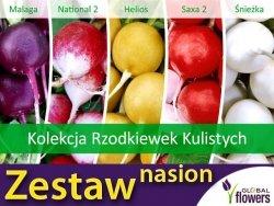 Kolekcja Rzodkiewek Kulistych (zestaw 5 odmian) nasiona