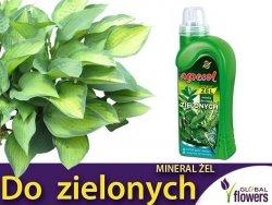 Agrecol Nawóz Mineral Żel do roślin zielonych 0,5l