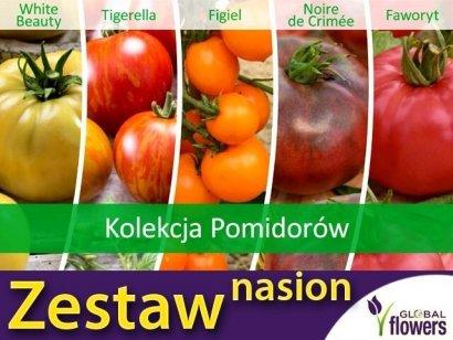 Kolekcja Pomidorów (zestaw 5 odmian) nasiona