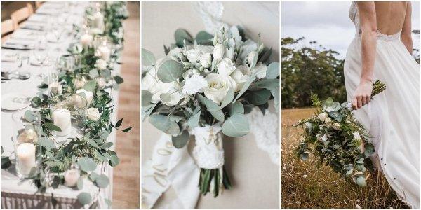 eukaliptus ślub