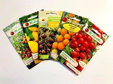 MIX pomidorów koktajlowych - zestaw 5 odmian pomidorów nasiona