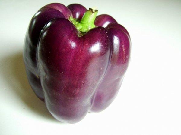 Papryka Fioletowa - do sałatek