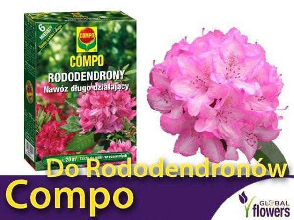 wydajny nawóz do azalii i rododendronów 1 kg