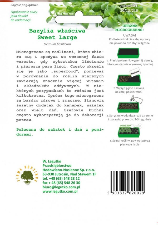 Microgreens Bazylia uprawa