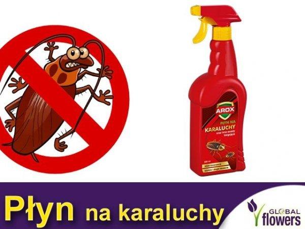 AROX KARATOX na karaluchy 500ml