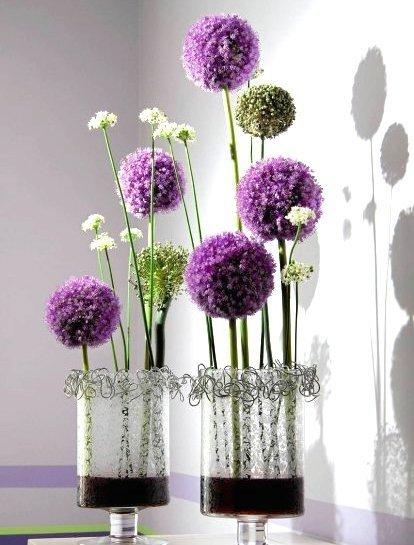 Piękne ogromne kwiaty !