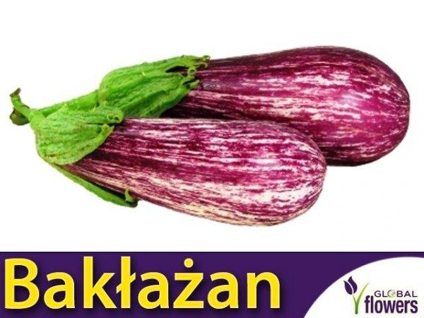 Oberżyna Bakłażan Tsakoniki (Solanum melongena)